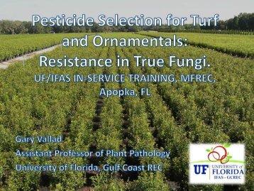 Fungicide Resistance in True Fungi
