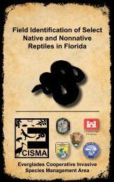 Field Identification of Select Native and Nonnative Reptiles in Florida