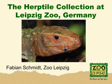 Herpetology at the Leipzig Zoo - snakeTAG