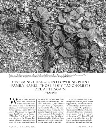 UPCOMING CHANGES IN FLOWERING PLANT FAMILY NAMES ...