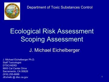 Scoping Assessment Overview - the Department of Toxic ...
