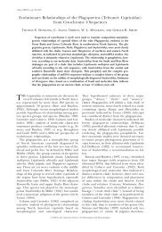 Evolutionary Relationships of the Plagopterins (Teleostei ...