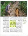 Bericht aus GEO Magazin 04/2010 - Stark AG - Seite 4