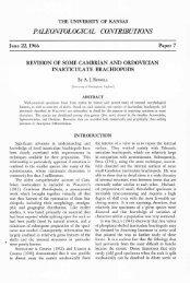 paleontological contributions - KU ScholarWorks - The University of ...