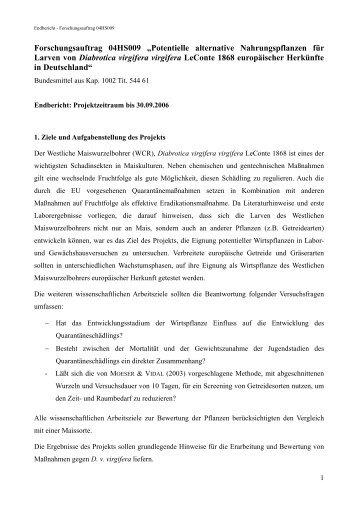"Forschungsauftrag 04HS009 ""Potentielle alternative ... - BLE"