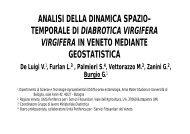 analisi della dinamica spazio- temporale di diabrotica ... - Grimpp