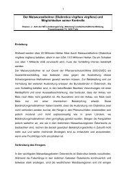 Der Maiswurzelbohrer (Diabrotica virgifera virgifera ... - Land-Impulse