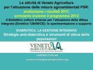 Strategie anti-diabrotica e strumenti di stima delle - Veneto Agricoltura