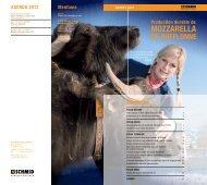 Edition 2/2012 - Schmid AG
