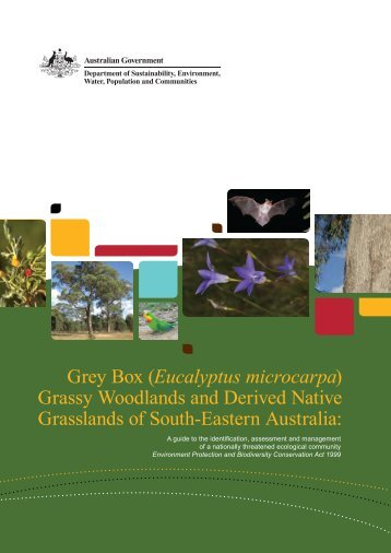 Grey Box (Eucalyptus microcarpa) Grassy Woodlands and Derived ...