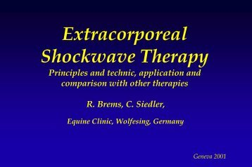Extracorporeal Shockwave Therapy - Storz Medical AG