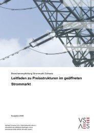 Leitfaden zu Preisstrukturen im geöffneten Strommarkt - VSE