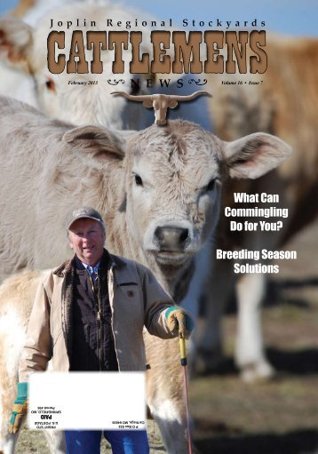 What Can Commingling Do for You? Breeding Season Solutions
