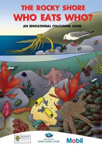 Rocky Shore Who Eats Who Colouring Book - University of Otago