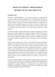 Memoria Tineo.pdf - Premio Conama