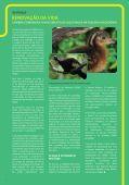 Janeiro - Cenibra - Page 6