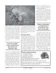 SUMMER LETTUCE - Canadian Organic Growers - Page 2