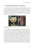 ad Ergebnisse - Tropenstation | La Gamba - Seite 5