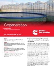 Case History: Cogeneration, De Breuck ... - Cummins Inc.