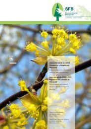 Forstpflanzen / Plantes forestières - Volkswirtschaftsdirektion ...