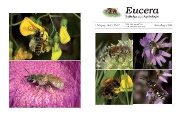 Eucera - Wildbienen