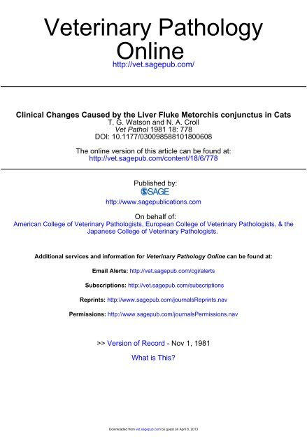 Clinical Changes Caused by the Liver Fluke Metorchis conjunctus in