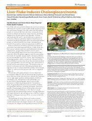 Liver Fluke Induces Cholangiocarcinoma - Tropical Disease ...