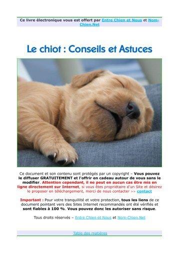Le chiot : Conseils et Astuces - Chiens de France