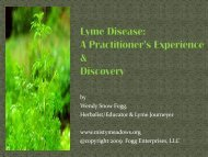 Lyme Disease: A Practitioner's Experience ... - Misty Meadows