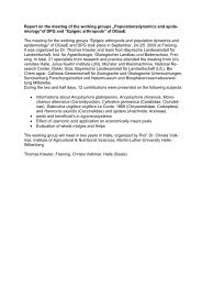 Report on the meeting of the working groups ... - Die DPG