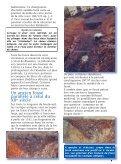 """Télécharger """"journal_num5.pdf"""" - service Archéologie de la ville de ... - Page 7"""