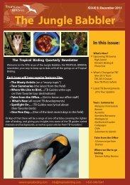 Tour Summaries - Tropical Birding