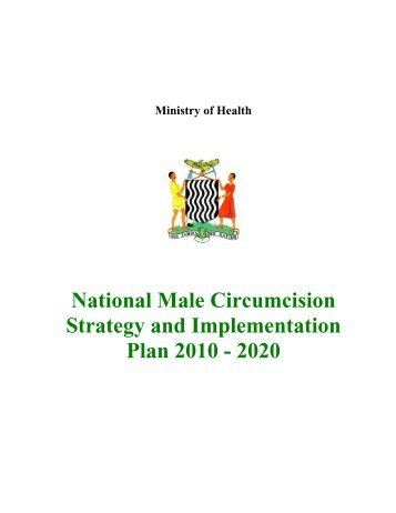 National MC Strategy and Implementation Plan 2010 - 2020