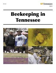 Beekeeping in Tennessee - UT Extension - The University of ...
