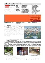 Grottes du massif du Dachstein - Edytem