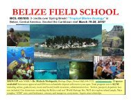 BELIZE FIELD SCHOOL - Department of Biology - New Mexico State ...