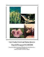Caye Caulker Integrated Management Plan - Glover's Reef Marine ...