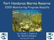Port Honduras Marine Reserve