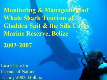 Whale Shark Tourism 2005 - Domino.conanp.gob.mx