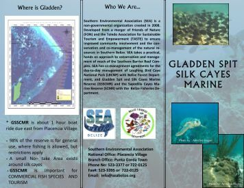 gladden spit silk cayes marine - Southern Environmental Association