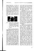 Vol 1(1) 6 Krishna P Candra - Page 5