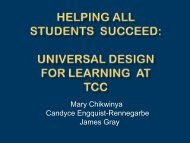 Universal Design for Learning - Achieving the Dream