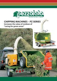 CHIPPING MACHINES – PZ SERIES - Pezzolato spa