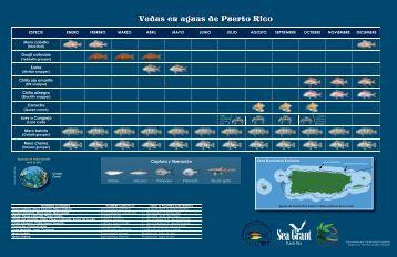 Tabla de Vedas - Puerto Rico Sea Grant College Program