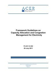 Framework Guidelines on Capacity Allocation and ... - ACER - Europa