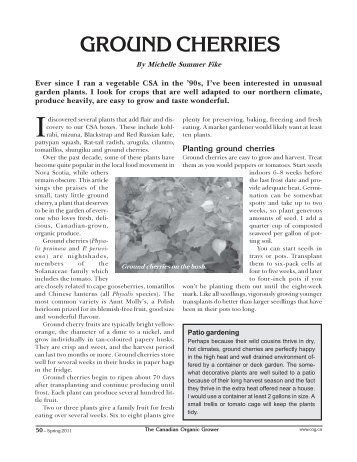 Ground cherries.pdf - Canadian Organic Growers