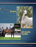 Leo Arabians & Arabian Stud Europe - tutto arabi - Page 3