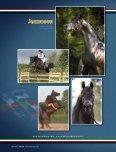 Leo Arabians & Arabian Stud Europe - tutto arabi - Page 4
