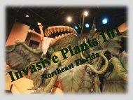 Invasive-Wise Community Invasive Plant 101