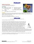 December - Pleasant Oaks Gem and Mineral Club - Page 3